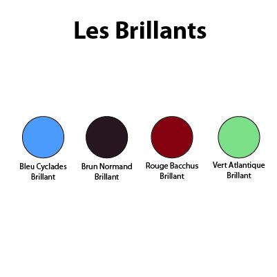 Peinture Bois Et Fer Polyvalente Extérieure 25 Litres Sèni Color