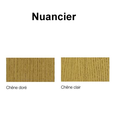 Nuancier Vernis Gel Bois Cire Blanchon 1l